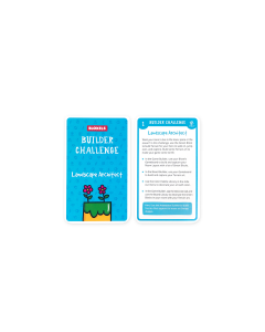 Bloxels Builder Challenge Card Deck